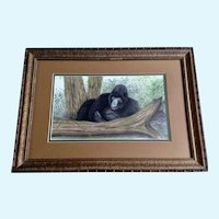 L Borden, Sleeping Gorilla Ape in Jungle, Titled Nap Pastel Drawing Signed by artist