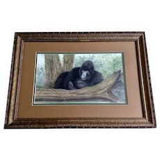 L Borden, Sleeping Ape in Jungle, Titled Nap Pastel Drawing Signed by artist