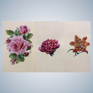 1875-1880 Victorian Die Cut Embossed Paper Scrap Group of 3 Flowers