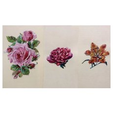 1875-1880 Victorian Die Cut Embossed Paper Scrap Group of 3 Flowers