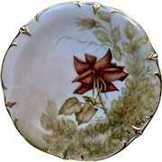 1986 Hand Painted Rose Plate Bavaria Schumann Arzbero Germany Warnemunde Signed By Artist Marie