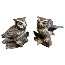 Witty Woodland Mountain Scops Owls Norleans Ceramic Figurines