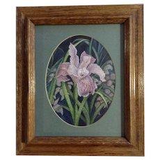 Beautiful Purple Iris Flower Landscape Watercolor Initialed by Artist