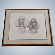Susan (Sue) B. Rupp (1959-2008), Poodle Dog Portraits Original Pencil Sketch Signed by Artist