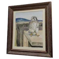 Tamara Sayre Baby Hawk Bird in the Mountains Watercolor Mixed Media Works on Paper Signed By Artist