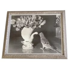 Mid-Century Black and White Photo of a Parakeet Kissing a Ceramic Swan Vase Photograph