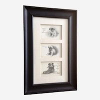 Adorable Bull Dog Puppy Postcards Framed Early 20th Century