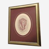 Marsha K Howe, Intaglio Etching, A Helmet Sea Shell, Limited Edition Print