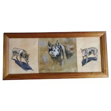 Bowan, Study of a Wolf, Pastel & Graphite Animal Sketch Works on Paper Signed By Artist