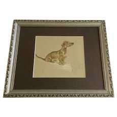 1930's-1940's Lucy Dawson, Dachshund Doxin Named Snoodle Framed Print from the Book, Dogs Rough And Smooth