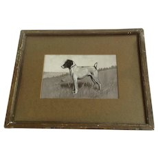 Jack Russell Terrier Dog 19th Century Watercolor Painting