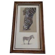 Hans P Luetcke (1925-2007), Zebra at the Zoo Mixed Media Paintings Signed By Listed Sedona Arizona Artist