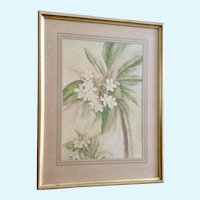 Plumeria Flowers Still Life Watercolor Painting 1939
