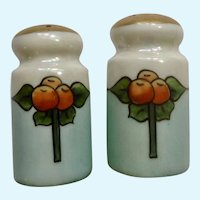 Noritake Nippon Art Nouveau Salt and Pepper Shakers Lusterware S&P Japan