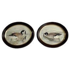Pair of Canadian Geese Original Watercolor Paintings