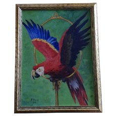 1934 R Ford Scarlet Macaw Bird Oil Painting on Board Signed By Artist