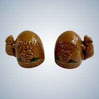 Vintage Yellowstone Park Old Faithful Bears Salt and Pepper Shakers Ceramic S&P Figurines