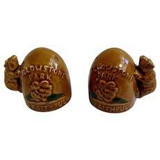 Vintage Yellowstone Park Old Faithful Bears Salt and Pepper Shakers Ceramic S&P Figurines