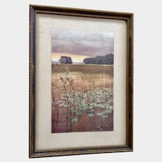 Original Color Photochrom Print Water Lilies in the Forest Clearing Nenuphars Circa 1910's Dresden Germany in Original Frame