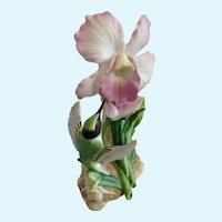 Hummingbird and Orchid Masterpiece Bone China Porcelain Figurine