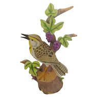 Danbury Mint 'The 12 Songbirds' Collection Western Meadowlark Bird Porcelain Bisque Figurine Retired