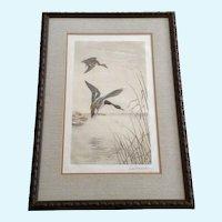 Leon Danchin (1887-1938) Mallard Ducks Aquatint Etching