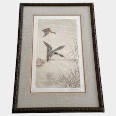 Leon Danchin (1887-1938) Mallard Ducks in Flight (Couple de Colverts Dans le Marais) Aquatint Etching Signed by Listed French Artist