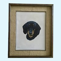 S Brown, Doxin Dachshund Dog Portrait Oil Painting Signed by Artist