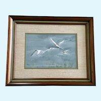 J Knowles, Caspian Tern Waterfowl Birds In flight Over Reeds Original Watercolor Painting Signed by Artist