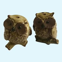 Brown Clay Owls Salt and Pepper Shakers Vintage