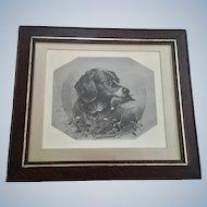 James Brade Sword (1839-1915) Bird Hunting Dog 19th Century Lithograph in Original Frame