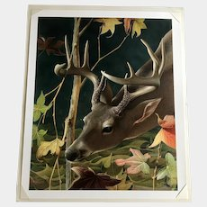 Tommy Humphrey, Buck Deer 'Makin Rubs' Print Giclee on Watercolor Paper Limited Edition Signed by artist