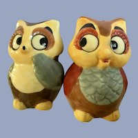 Witty Owl Salt and Pepper Shakers Hand Painted Ceramic S&P Figurines