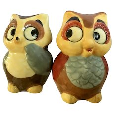 Cute Owl Salt and Pepper Shakers Hand Painted Ceramic S&P Figurines
