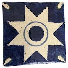 Old Blue and White Star Tile Terra-cotta