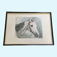 White Horse Portrait Etching Print Aquatint Signed