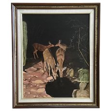 Dorothy Kratz, Nocturnal Deer Drinking from Desert Spring Oil Painting