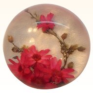 Vintage Round Domed Lucite Red Dried Flowers Brooch