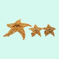 BSK Textured Goldtone Metal Starfish Brooch Clip On Earring Set