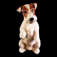 Rare Royal Doulton Fox Terrier Dog Miniature Sitting Pretty 760