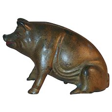 Old Figural Cast Iron  Golden Still Penny Bank Pig or Hog Sitting on Hind Legs