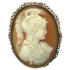 Detailed Cameo Brooch 14 k Athena