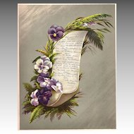 Antique PRINT - 'Varieties of PANSY' ~ Victorian Chromolithograph c.1880s