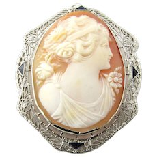 Vintage 14 Karat White Gold and Sapphire Cameo Brooch/Pendant