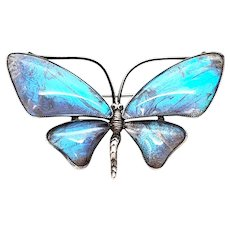 Vintage Thomas Mott England Sterling Silver Morpho Butterfly Wing Butterfly Pin/Brooch