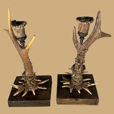 Pair of Roe Deer Antler Candlesticks