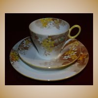 Shelley China Trio - Yellow Blossom - Oxford Shape.