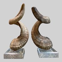 Vintage 1960's Ram Horns on Lucite Bases