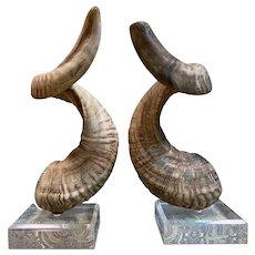 Vintage 1960's Ram Horns on Lucite Bases