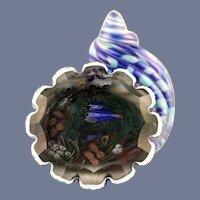 RARE Incredible MAGNUM Justin LUNDBERG Shell  INTERIOR Fish AQUARIUM Paperweight